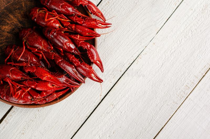 A plate with crayfish on white wooden background. Copy space, selective focus. Overhead royalty free stock images