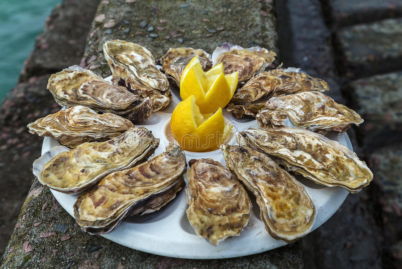 Plate with dozen oysters. And a lemon on the parapet of the embankment, Cancale, France royalty free stock photo