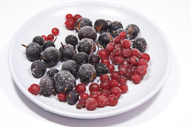 Plate of frozen berries royalty free stock images