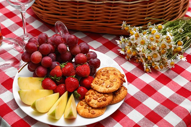 Plate with fruits and cookies near picnic basket on checkered blanket royalty free stock photography