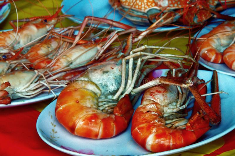 A plate of giant prawns royalty free stock photo
