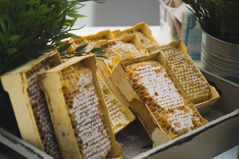 A plate of honeycombs sold at the fair. Background, bee, golden, sweet, food, healthy, natural, organic, yellow, closeup, delicious, dessert, fresh, ingredient stock photo