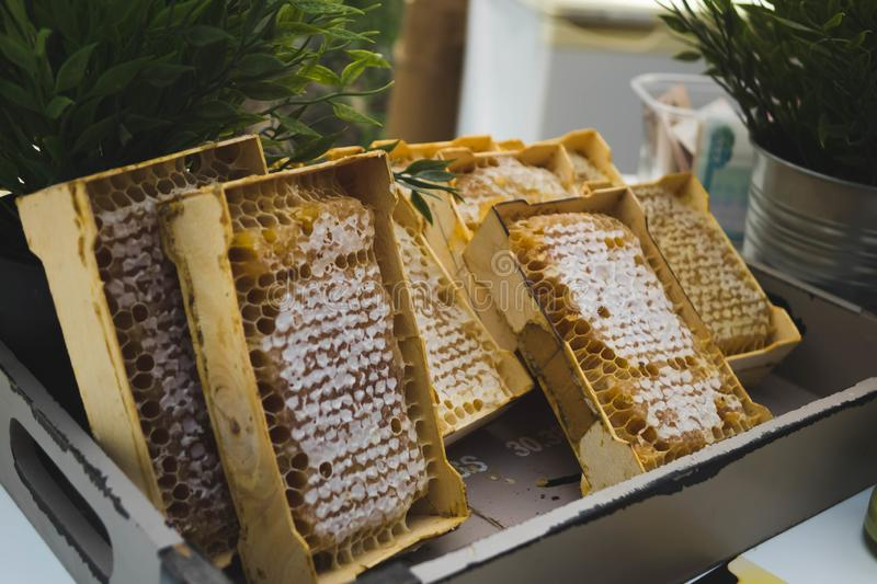 A plate of honeycombs sold at the fair. Background, bee, golden, sweet, food, healthy, natural, organic, yellow, closeup, delicious, dessert, fresh, ingredient stock image
