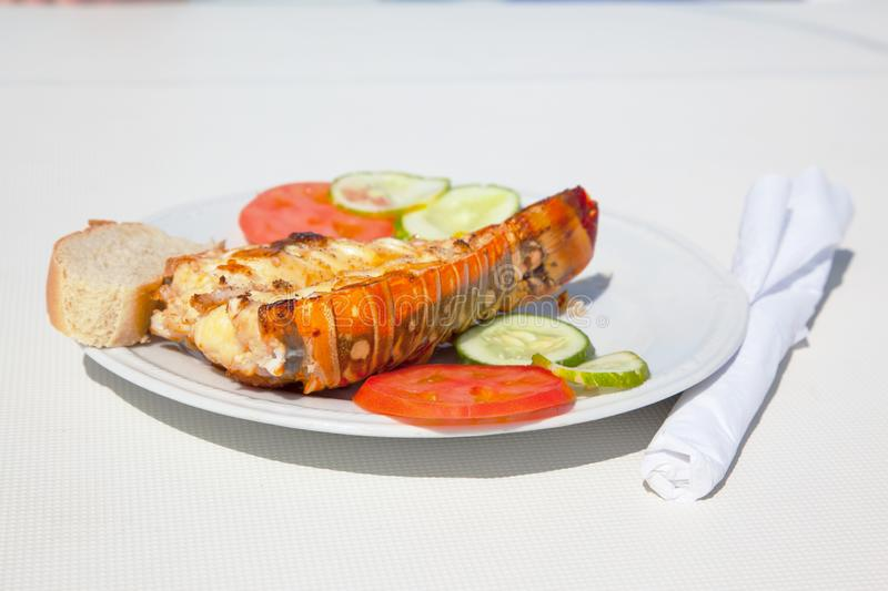 A plate with lobster langouste. Cuba. A plate with lobster langouste on a yacht against the backdrop of the azure waters of the Caribbean Sea. Cuba stock photos