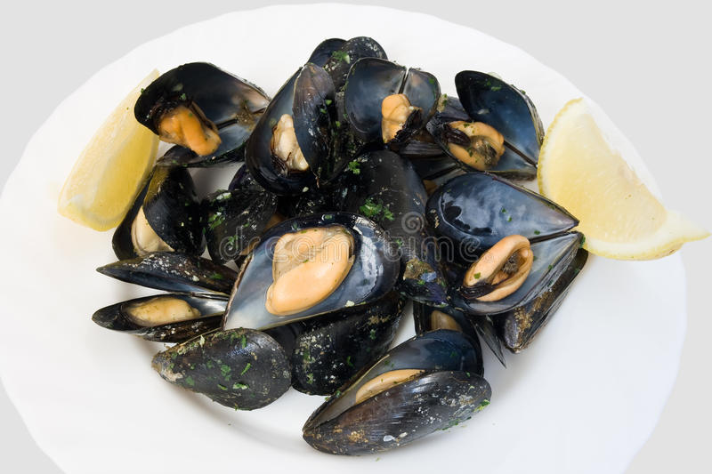 Plate with mussels royalty free stock photography