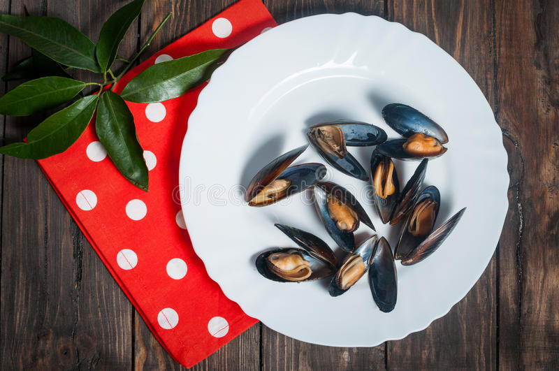 Plate of mussels with leaves on wooden table royalty free stock photography