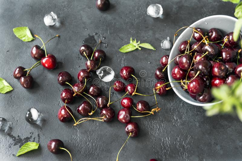 Plate with scattered fresh cherries and pieces of ice on a dark background, mint royalty free stock photography