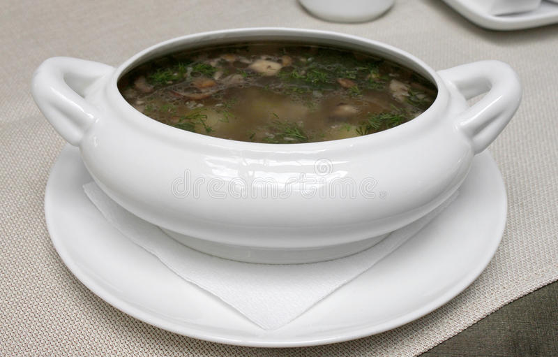 Download Plate of soup stock photo. Image of eatable, tablecloth - 29692430