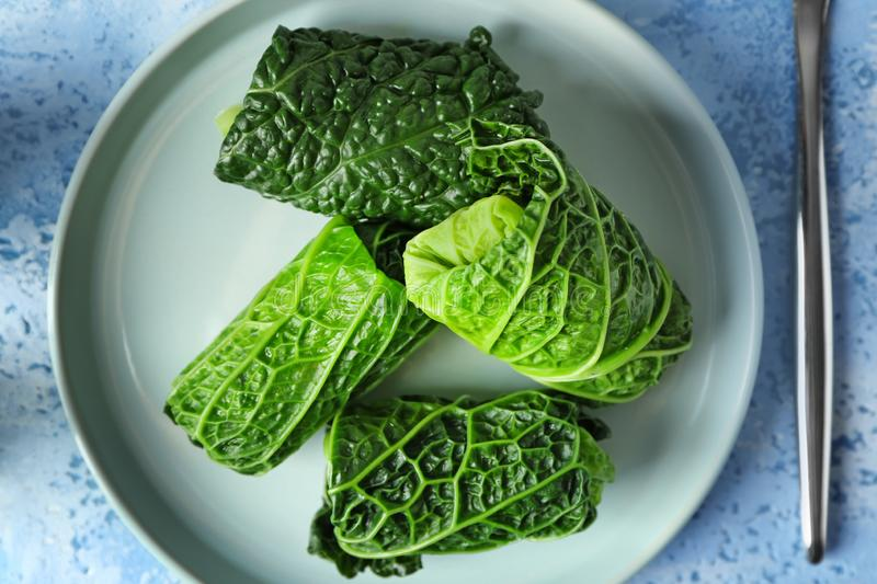 Plate with stuffed cabbage leaves on table stock image