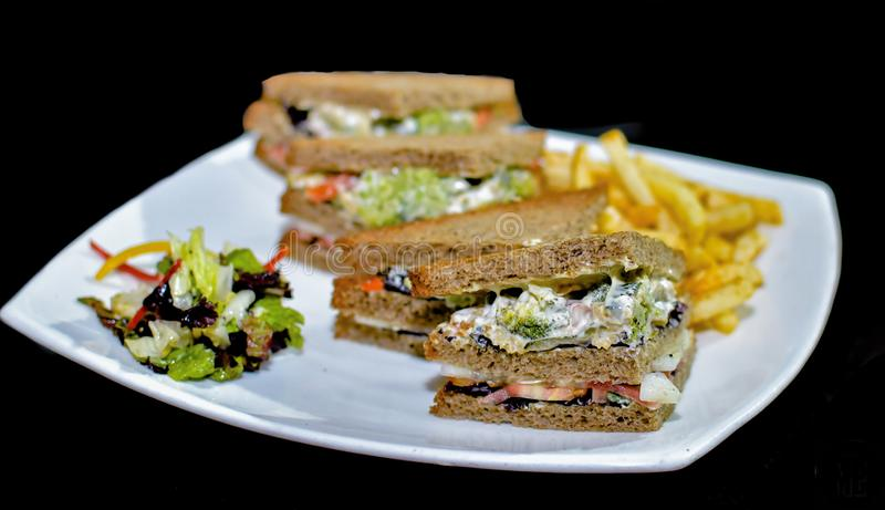A plate of succulent, delicious looking vegetable club sandwiches ready to be eaten, served along with a homemade salad and hand c royalty free stock image