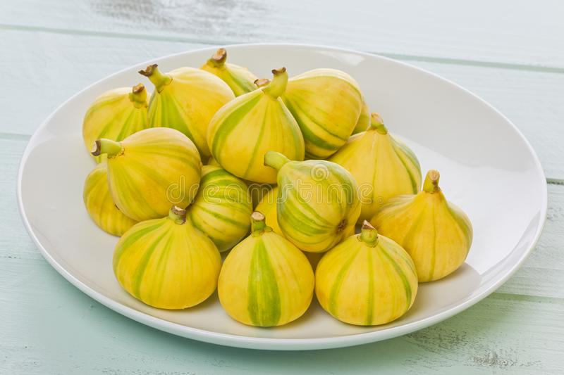 Plate of Tiger Striped Figs. White plate with several whole Tiger striped figs, also known as Panache figs, and Candy striped figs on a painted background royalty free stock images