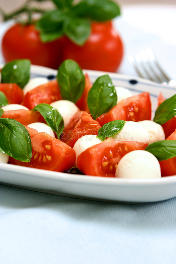 Plate of tricolore salad, royalty free stock photos
