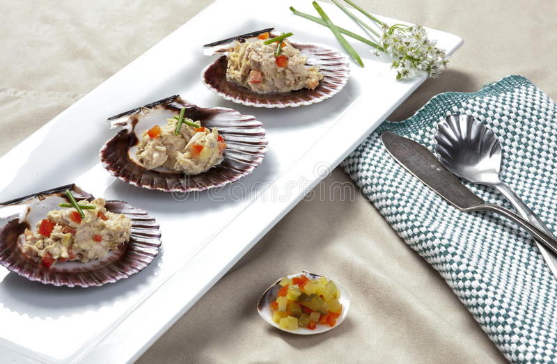 Plate of tuna on shells. A close up of tuna salad mixed with diced red bell pepper and topped with chives served on scallop shells with a side of freshly diced royalty free stock images