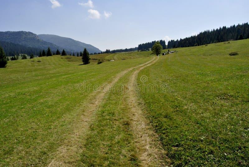 Plateau alpino fotografia stock
