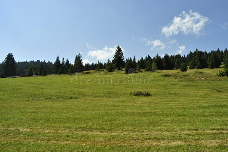 Plateau alpino fotografia stock libera da diritti