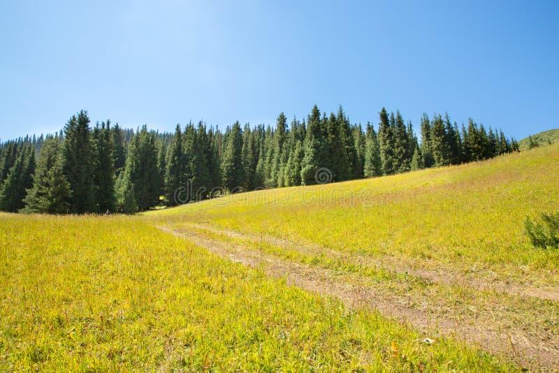 Plateau d'Assy en montagne de Tien Shan à Almaty, Kazakhstan, Asie à l'été photographie stock