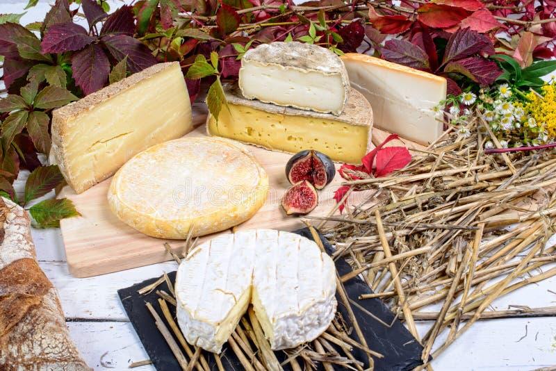 Plateau français de fromage photos stock