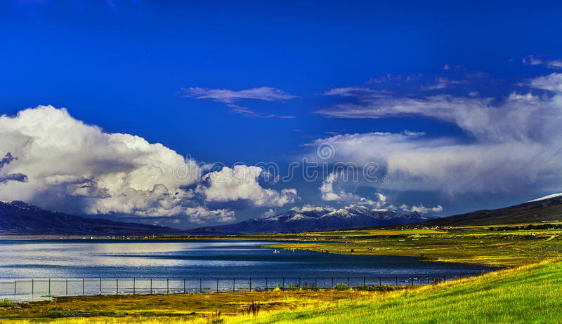 Plateau lakes - Qinghai Lake. It is located in the famous lake of Qinghai Province in China - Qinghai Lake royalty free stock images