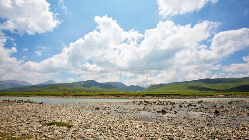 Plateau meadow beside the stream royalty free stock photos