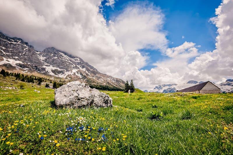 Plateau of Montasio. Mountain range landscape. Mountain range landscape. Plateau of Montasio, Italian Alps royalty free stock photos