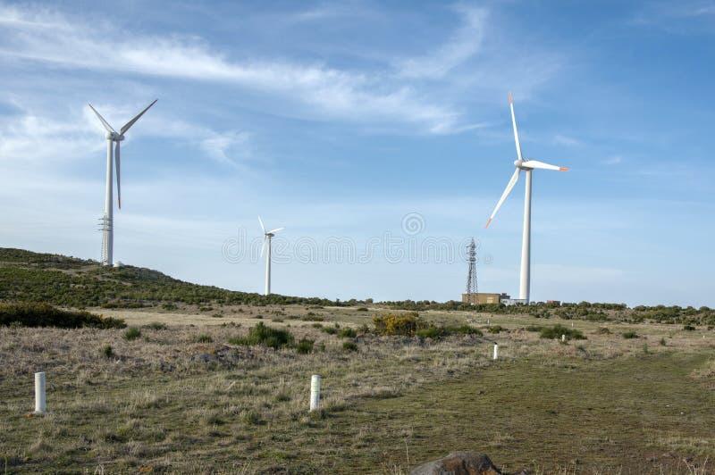 Plateau Paul da Serra, wysoka równina z silnikami wiatrowymi na madery wyspie po środku wyspy, Portugalia, Europa fotografia royalty free