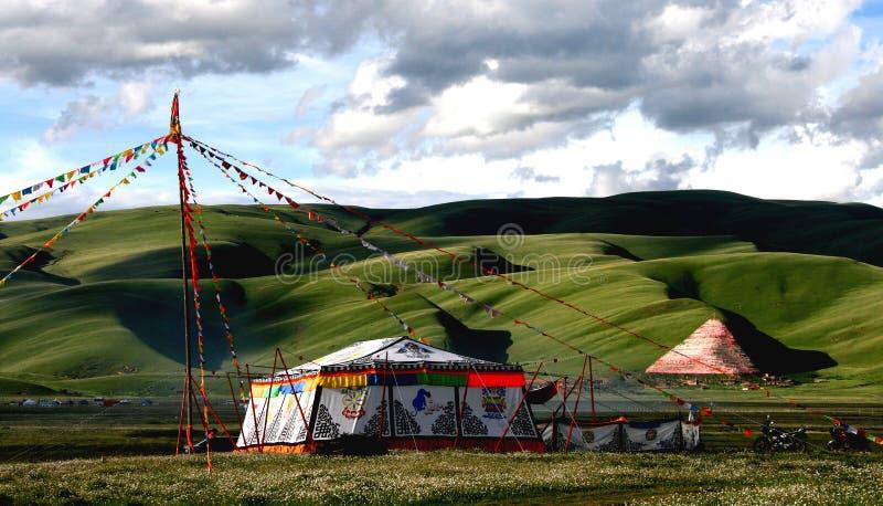 plateau sceneria Tibet zdjęcia stock