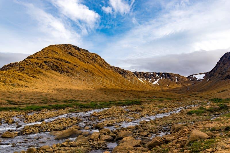 Plateaux de Gros Morne National Park, Terre-Neuve photos libres de droits