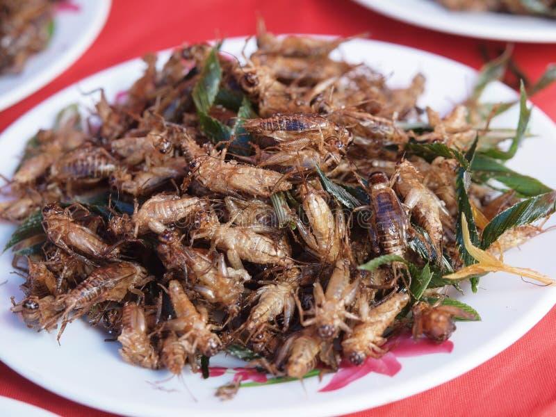 Plato de insectos fritos foto de archivo libre de regalías
