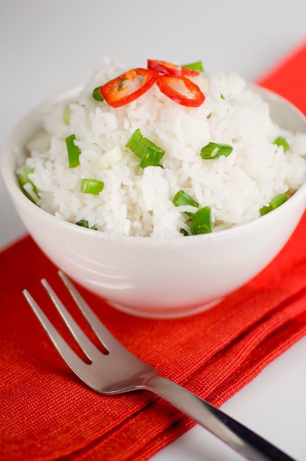Plato del arroz imagen de archivo libre de regalías