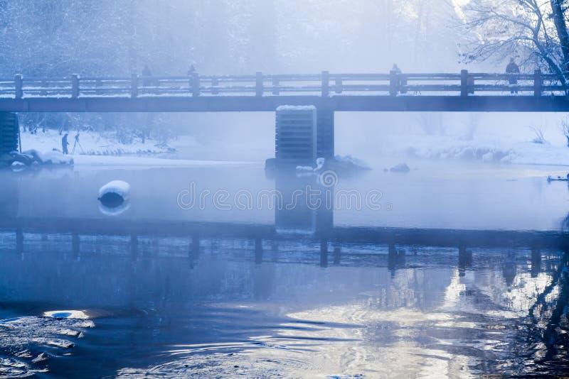Plats för morgon för Merced flodvinter med mist royaltyfri fotografi