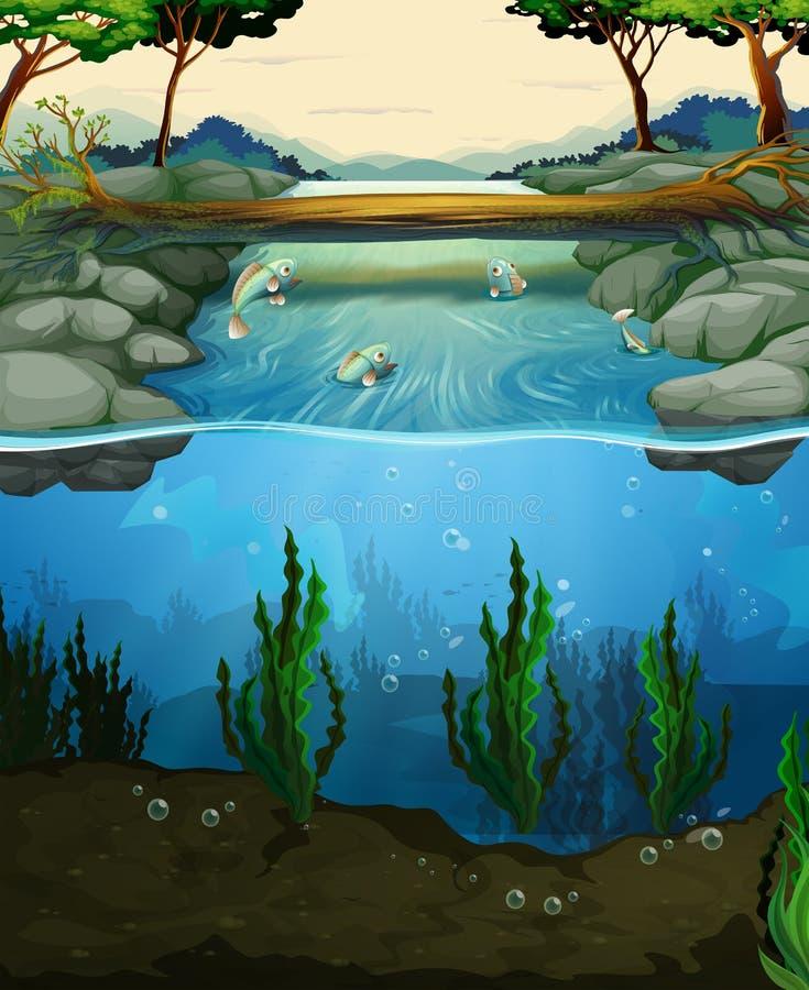Plats med fisksimning i floden vektor illustrationer