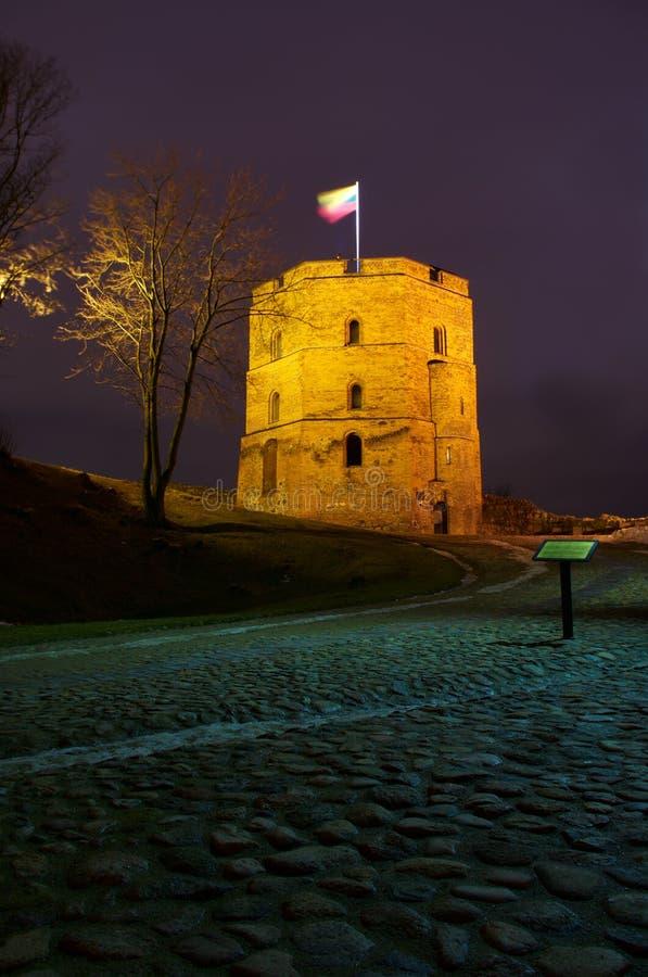 plats vilnius för slottgediminaslithuania natt royaltyfria bilder