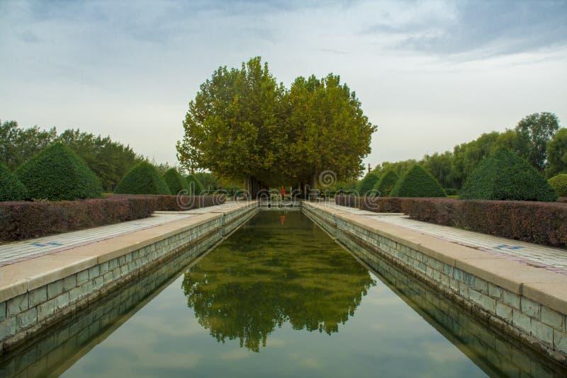 Platsen för trädgården för kungliga personen för Kina ` s parkerar - den tidiga hösten av den luoyang sui skarp smakplatsen parke royaltyfria foton
