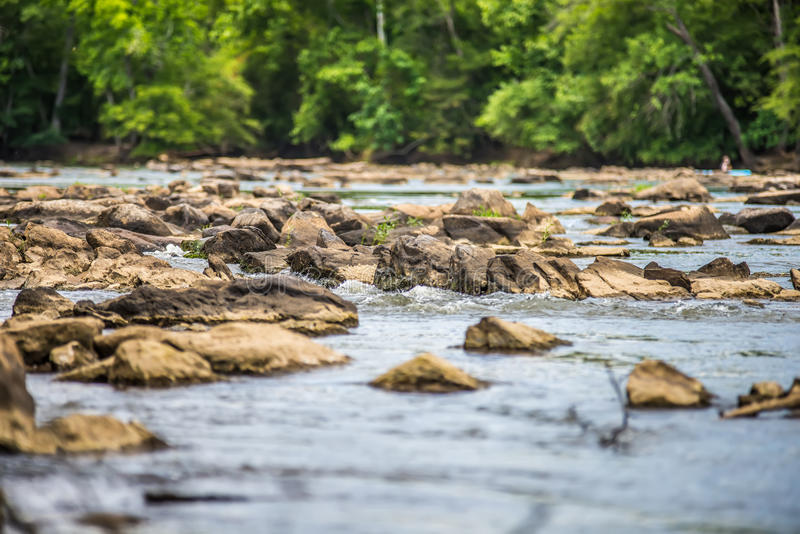 Platser runt om landsfordkanaldelstatspark i South Carolina royaltyfri bild