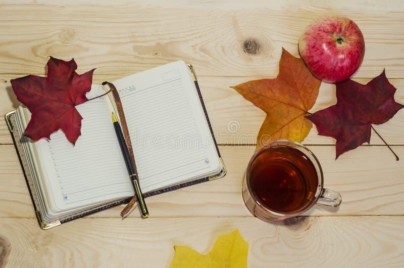 Platt, övre höstkomposition tom, blanka och penna, varmt te, fallna blankblad på en lätt bakgrund av trä royaltyfria foton