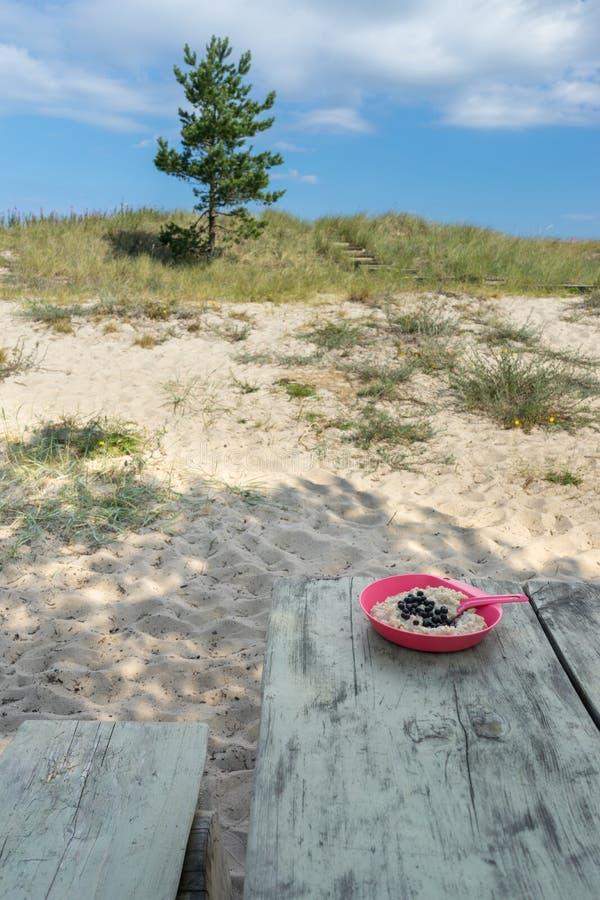 Platta av havremjölet med blåbär på campingplatstabellen arkivbilder