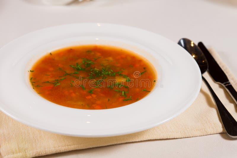Platta av näringsrik grönsakbuljong eller soppa arkivbild
