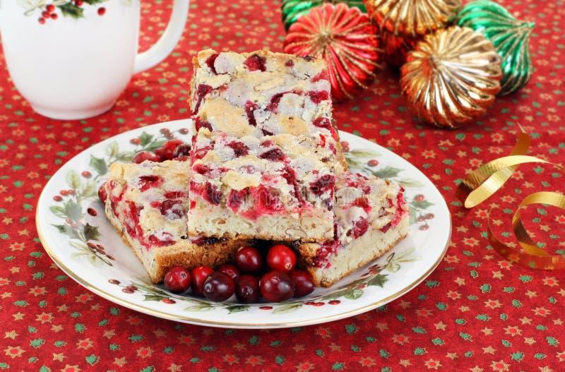 platta för mutter för julkakacranberry arkivbild