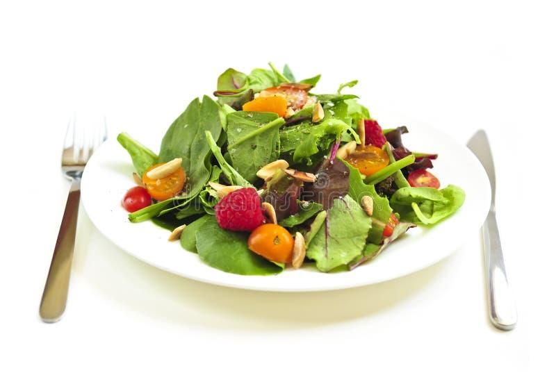 Platte des grünen Salats auf weißem Hintergrund lizenzfreie stockfotografie