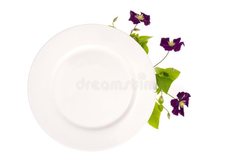 Platte mit den violetten Blumen, Schein oben für Menü stockfoto