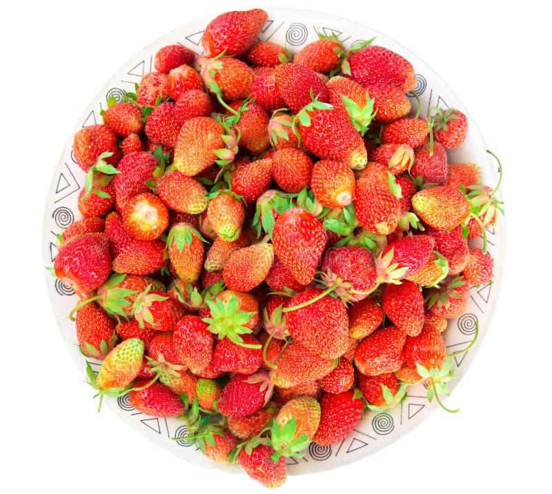 Platte mit frischen Erdbeeren Getrennt auf weißem Hintergrund lizenzfreie stockfotografie