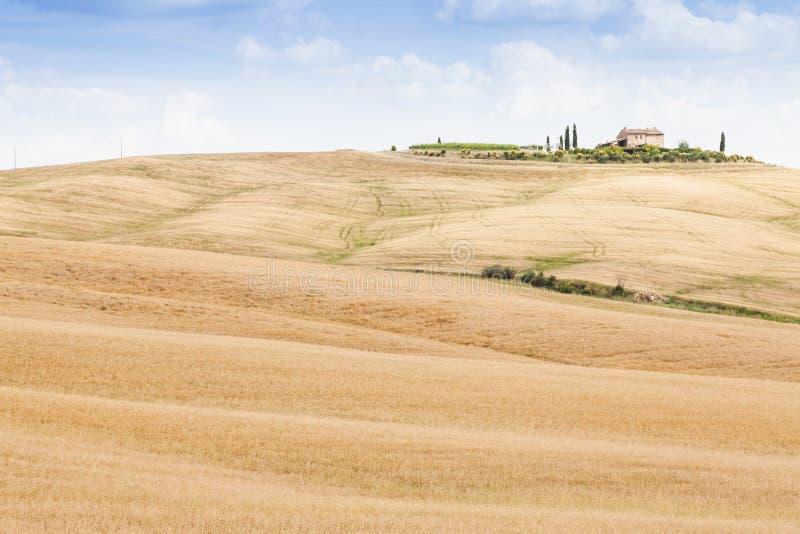 Platteland in Toscanië stock foto