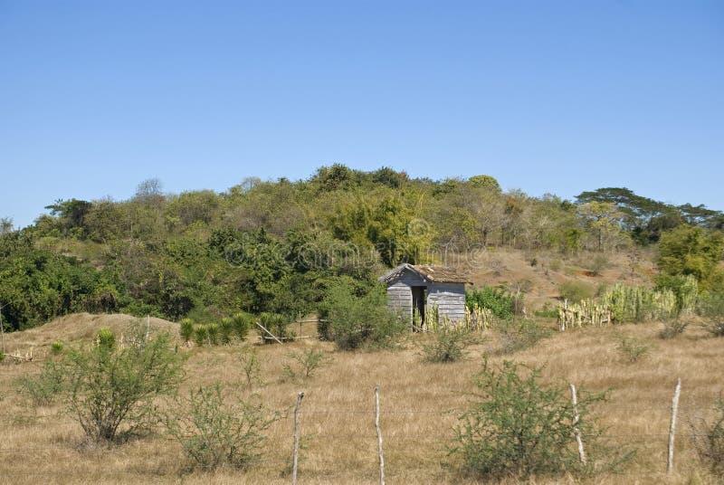 Platteland, Vallei van Ingenios, Cuba stock foto