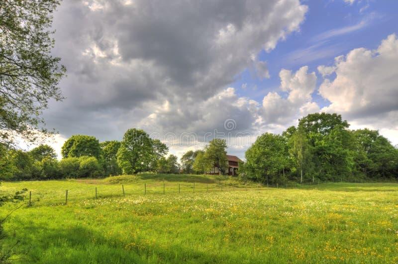 Platteland in Zweden stock foto's