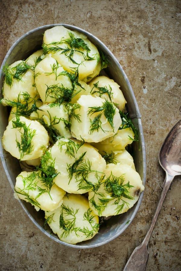 Plattelander gekookte aardappel en dille royalty-vrije stock afbeeldingen