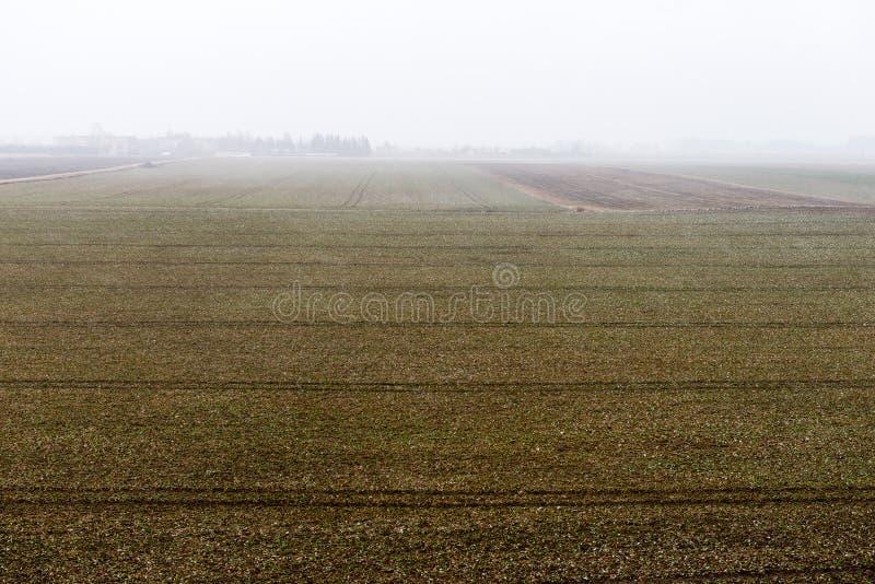 Download Plattelandsgebieden In De Vroege Lente Stock Foto - Afbeelding bestaande uit horizon, vreedzaam: 54077198