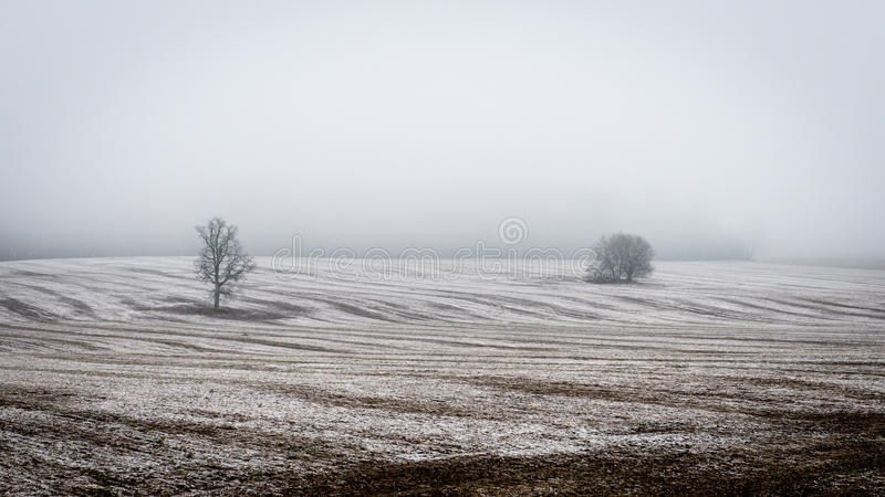 Download Plattelandsgebieden In De Vroege Lente Stock Afbeelding - Afbeelding bestaande uit middag, nave: 54077261