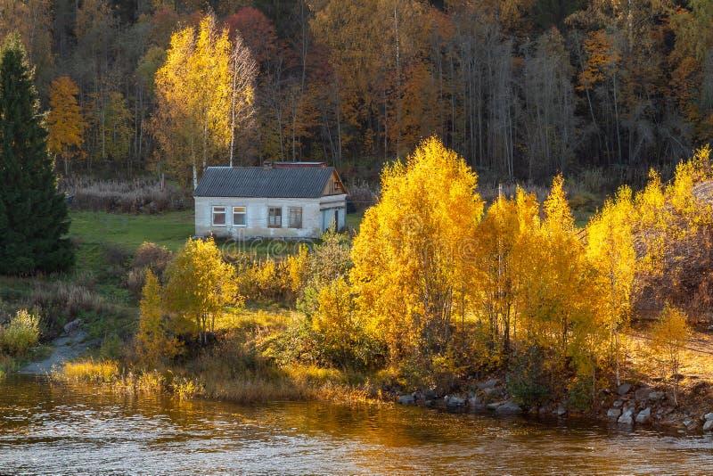 Plattelandshuisje op de rivierbank door de herfst bosautumn landscape wordt omringd - Beeld dat stock afbeelding