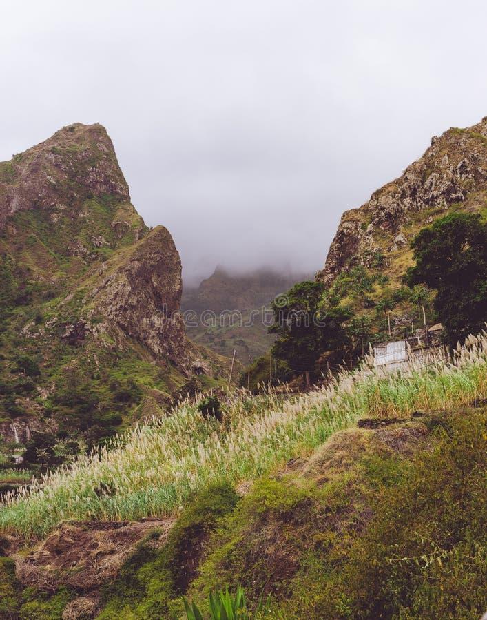Plattelandshuisje tussen steile rots wordt genesteld met suikerrietinstallaties die wordt overwoekerd Santo Antao, Kaapverdië royalty-vrije stock afbeeldingen