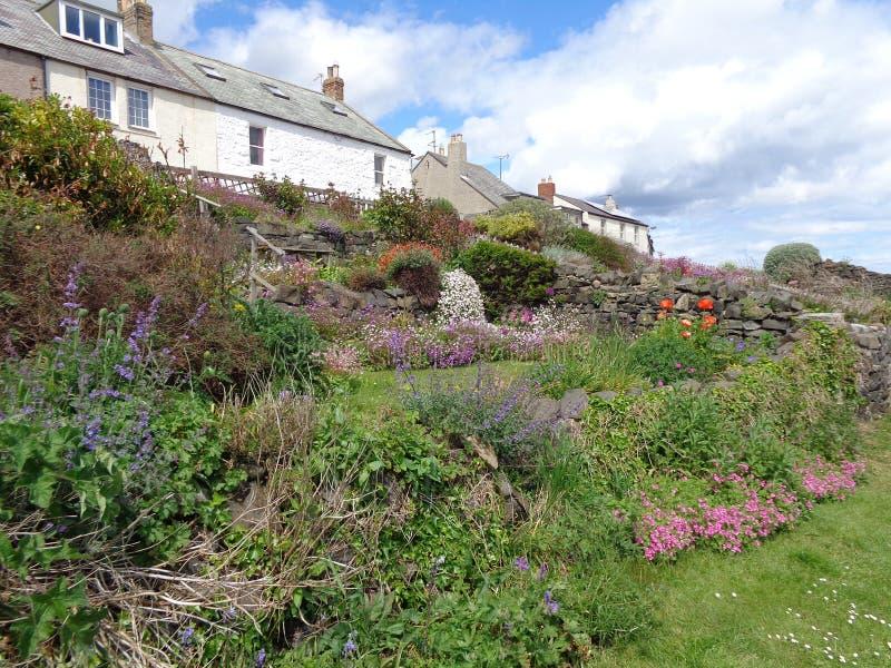 Plattelandshuisjes die Craster-Haven Northumberland overzien stock fotografie